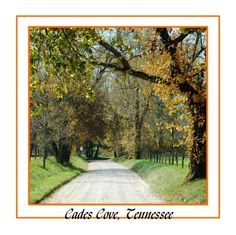 Cades Cove. Been here hundreds of times and never get tired of going back! Wish I was there now:)