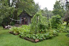 acalmstrength42:  ruralgirl:  (via Mothering with Mindfulness: Around the Garden)  Happy little garden.