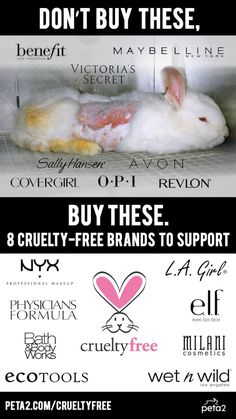 Stop Supporting Companies That Pay for Tests on Animals! | peta2