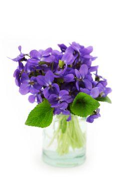 ramo de violetas - Buscar con Google