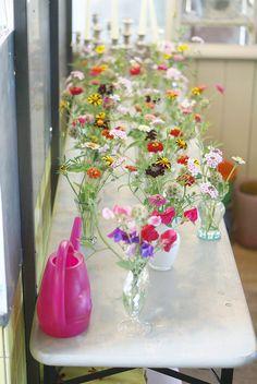 more flower-power  flower harvest by wood & wool stool, via Flickr