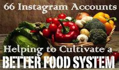 66 Instagram Accounts Helping Cultivate a Better Food System! #foodies #foodactivists #foodpolitics #foodmovement #instagramfood