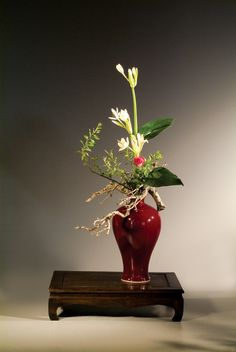 Arrangement from the Chinese Floral Arts Foundation of Taiwan Flower Show at Longwood Gardens