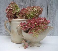pink hydrangea in white ironstone