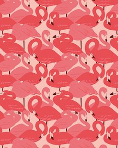 Pattern Design - Esther Lara - Flamingos