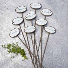Herbaceous Garden Herb Marker Set of 9  found on Layla Grayce #laylagrayce #garden #herbs