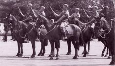 The Grey Scouts, mounted recon and patrol regiment of rhodesian Army.