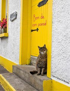"""Arre, estou farto de semideuses! / Onde é que há gente no mundo? / Então sou só eu que é vil e erróneo nesta terra?"""" [Álvaro de Campos/Fernando Pessoa, """"Poema em linha reta""""]"""