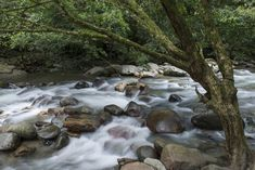 Rio Gaira flowing through the small mountain town of Minca, Colombia.