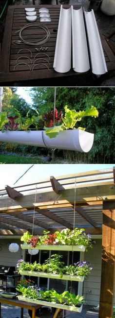 3 DIY Outdoor Vertical Garden Using Pvc Pipe