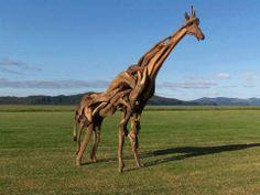 Driftwood giraffe built by Jeffro