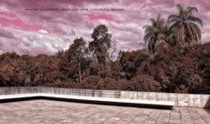 https://flic.kr/p/HajyEd   INHOTIM . May 2016  28   Inhotim, Museo y parque ecologico natural. Brumadinho, Minas Gerais. Fotografia: Artexpreso . Rodriguez Udias . *Photochrome Artwork Edition / BH, Brasil . May 2016 .. Website: rodudias.wix.com/artexpreso #Inhotim #artexpreso #photochrome #minasgerais #soubh