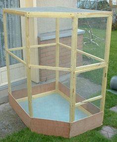 Ratten Cockatiel Toys, Budgies, Chameleons, Parrots, Big Bird Cage, Bird Cages, Diy Parakeet Cage, Baby Flying Squirrel, Bird Cage Design