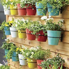 Festive Small Yellow Planter in Planters & Gardening Hanging Planters Outdoor, White Planters, Wall Planters, Diy Wall Planter, Vertical Planter, Hanging Plants, Small Gardens, Outdoor Gardens, Deco Nature