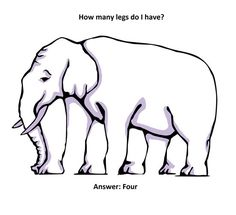 Optics for Kids: Optical Illusions. Elephant Legs