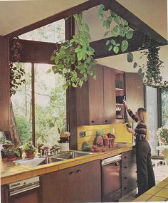 herbs and plants hanging down from a skylight!  -- plants make everything happier.  I remember the macrame hanging plant holders...
