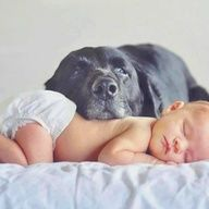 Newborn Baby Photography Ideas | Dog & Baby - ideas for newborn pictures