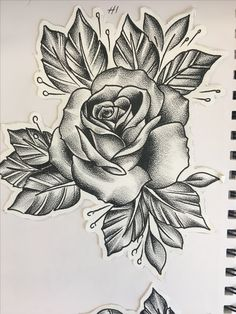 @heatherjacobsontattoos on Instagram Rose Tattoos, Flower Tattoos, Body Art Tattoos, Sleeve Tattoos, Rose Drawing Tattoo, Tattoo Drawings, Floral Tattoo Design, Flower Tattoo Designs, Dibujos Pin Up
