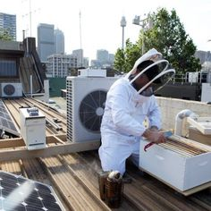 Bee-keeping throughout our city is an excellent example of sustainable food practices in Sydney. Pin your image to http://www.thegoodhood.com.au before September 25 to win a sustainable dinner for eight run by Urban Food Market.