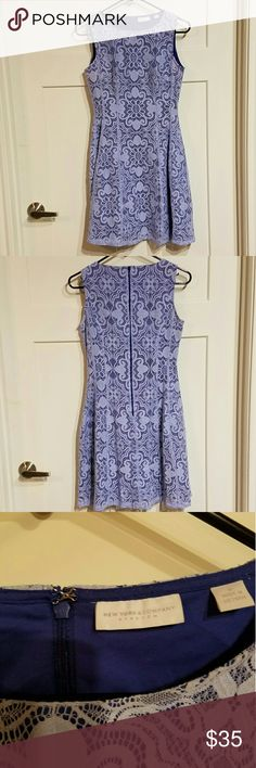 New York&Co Blue lace dress Super cute ny&co dress! Fit and flare style, would be great dressed up or dressed down. New York & Company Dresses Midi