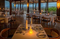 Celebrate this legacy in exclusive luxury at Rhino Ridge offering exceptional safari experiences in the heart of Big 5 territory - Welcome to Extreme Frontiers Safari Room, Branch Centerpieces, Hills And Valleys, Kwazulu Natal, Ice Climbing, Wooden Decks, Game Reserve, Tour Operator, African Safari