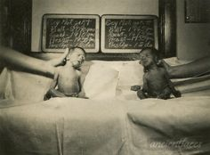 What a unique photo! First photo of twins Al & Ted Matczak taken in Chicago Illinois on May 27th, 1938.