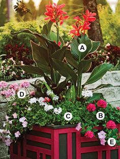 Choose a Bold Container & make your flowers say wow!