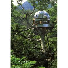 Tree Houses To Live In Glass Roof Steel Wall Black Balcony Fence. I would love to see inside. Beautiful Tree Houses, Cool Tree Houses, Beautiful Homes, Beautiful Beautiful, House Beautiful, Artistic Tree, Steel Roofing, Beach Rocks, Glass Roof