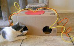 Aus einem leeren Karton und Papierseil tolles Spielzeug für Ihre Katze gestalten