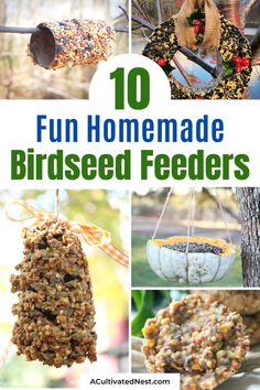 10 Homemade Birdseed Feeders- These 10 fun DIY birdseed feeders will help attract all kinds of beautiful birds to your yard! These make great kids crafts, too! | #kidsCrafts #birdseedFeeder #homemadeBirdFeeder #DIY #ACultivatedNest Rustic Crafts, Fun Diy Crafts, Homemade Crafts, Recycled Crafts, Home Crafts, Crafts For Kids, Feeding Birds In Winter, Bird Seed Feeders, Tire Garden