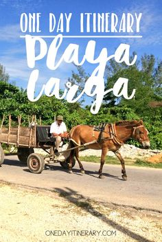 Playa Larga, Cuba - One day itinerary