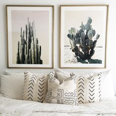 bedroom | bed | cactus | pillows