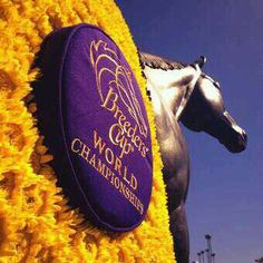 HAPPY  @Breeders' Cup DAY 2!