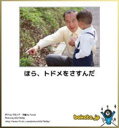 http://imgcc.naver.jp/kaze/mission/USER/20121206/14/1424614/935/480x520x1440689980cd3e8557b401dc.jpg