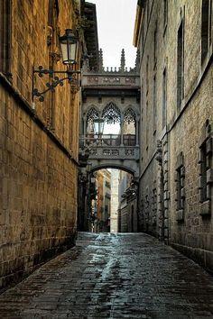 Callejon y puente Gótico, Barrio Gótico. Barcelona
