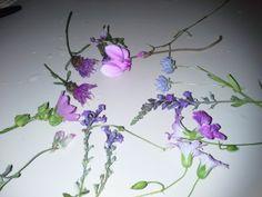 fiori spontanei dell'altipiano Silano, Agosto 2013