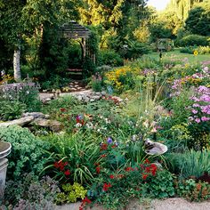 Butterfly garden.Provide a Water Source, it can be a shallow saucer with wet sand.