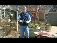 How To Prune a Drift® Groundcover Rose
