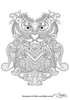 Uil Owl Abstract Doodle Zentangle Paisley Coloring pages colouring adult detailed advanced printable Kleuren voor volwassenen coloriage pour adulte anti-stress kleurplaat voor volwassenen