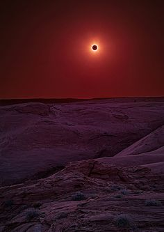 2012 solar eclipse by Fort Photo
