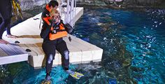 US Aquarium launches new scuba diving program for certified visitors - watch video  #scuba #diving #NewOrleans #aquarium