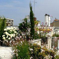 Vue depuis le balcon sur la terrasse
