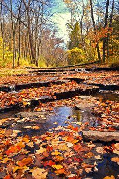 Bairds Creek, Green Bay, Wisconsin,  US