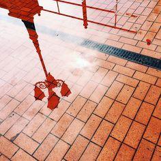 #kaliningrad #reflection #калининград #рыбнаядеревня #отражение