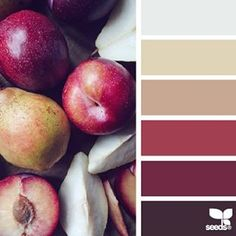 today's inspiration image for { color slice } is by @_ewabakrac ... thank you, Ewa, for another seasonal + inspiring #SeedsColor image share!