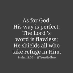 God's way is perfect. All His promises prove true. He is a shield for all who look to him for protection. Psalm 18:30