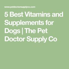 5 Best Vitamins and Supplements for Dogs | The Pet Doctor Supply Co