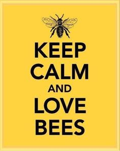 Keep Calm and Love Bees is all me. I love bees, my heart would hurt if someone killed a bee. Did u know bees are people to, also bees give us yummy honey? Bees only sting u if they feel threatend. Now u should feel bad Honey Bee Life Cycle, Bee Quotes, Calm Quotes, Quotes Quotes, Bee Facts, I Love Bees, Bee Friendly, Save The Bees, Bee Happy