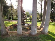 Quinta los Pinos Tepoztlán | Galería Fotográfica