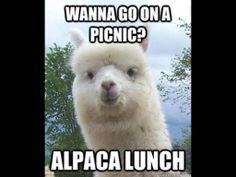 Lunch Mmmn.